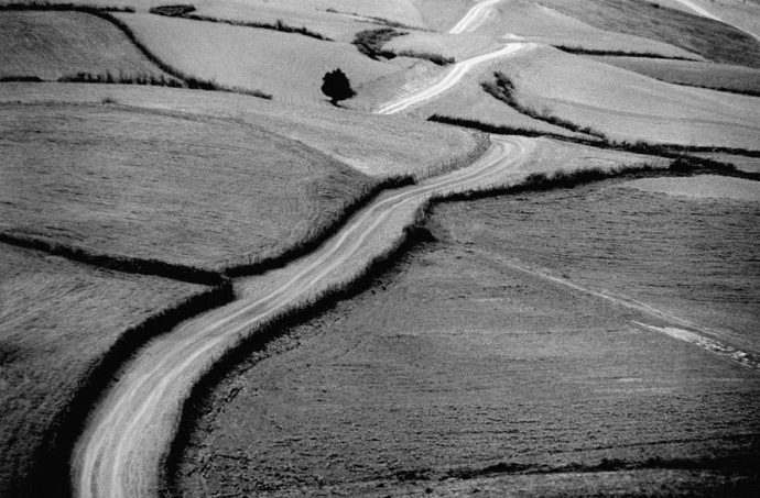Abbas Kiarostami dies aged 76