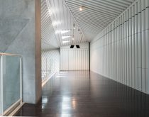 <em>Disorder</em>, BANK Gallery, Tokyo